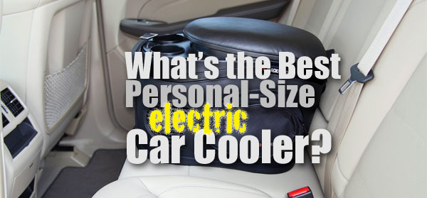 What is the Best Electric Car Cooler (Personal-Size)?