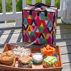 Use the Packit Freezable Grocery Bag for Picnics and More