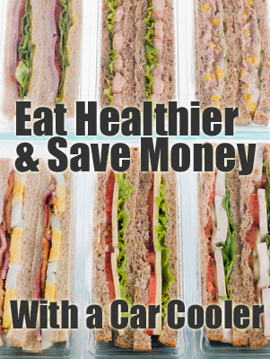 Eat Healthier and Save Money with a Car Cooler